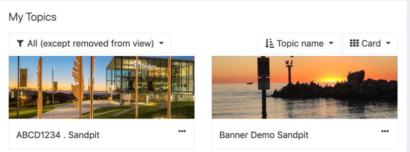Two topics in My FLO. The first topic has the default banner. The second topic has the picture of the sunset.