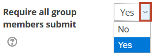 all group members submit