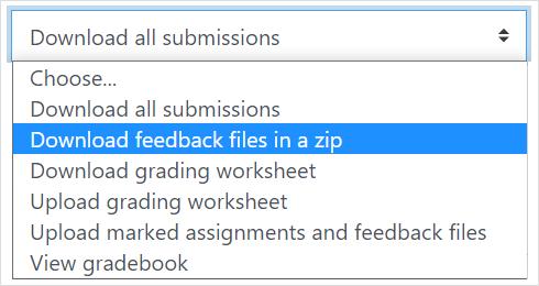 Download feedback files in a zip
