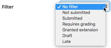 filter options
