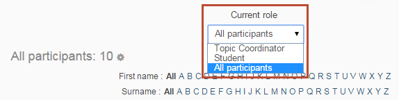 use the 'current role' drop-down menu