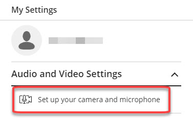 Click 'set up your camera and microphone'